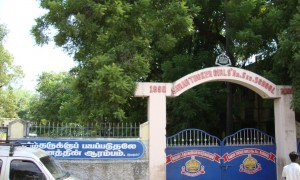 Sarah Tucker Higher Secondary School Palayamkottai